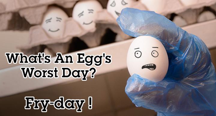 Egg_Worst_Day