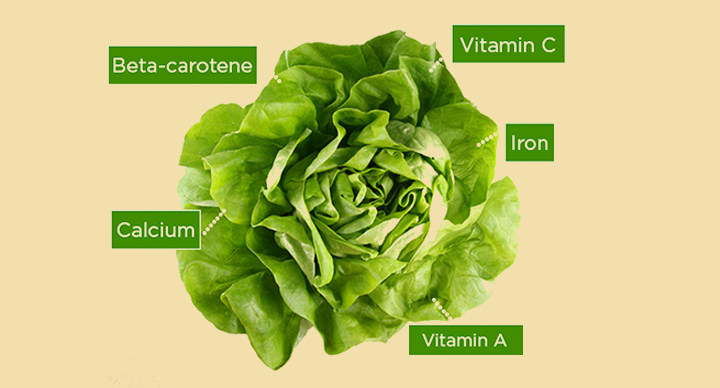 5 Benefits Of Eating Lettuce