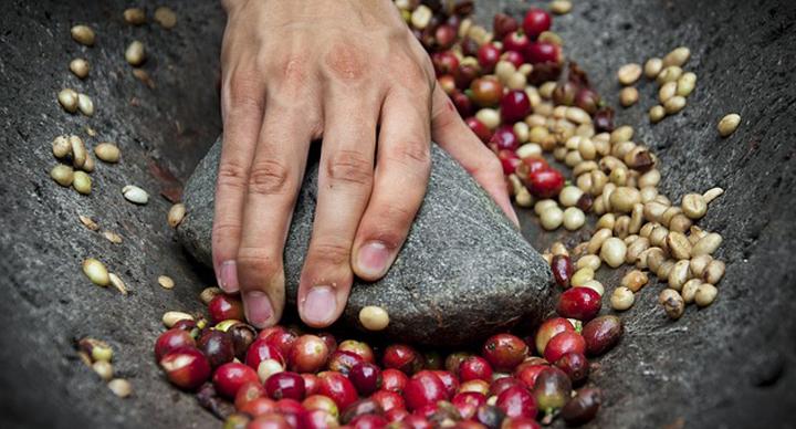 India_coffee